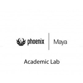 Phoenix Maya Academic Lab 1 Year Term