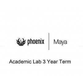 Phoenix FD Maya Academic Lab 3 Year Term